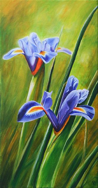 Iris - Acryl ca. 40 x 60 cm